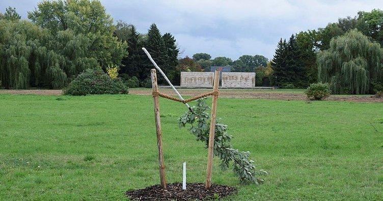 Almanya'da NSU kurbanı anısına dikilen ağaca çirkin saldırı