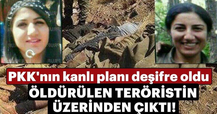 PKK'nın kanlı planı deşifre oldu! Öldürülen kadın teröristlerin üzerinde keşif fotoğrafları çıktı