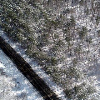Karla kaplanan İğneada Longoz Ormanları görsel şölen sunuyor