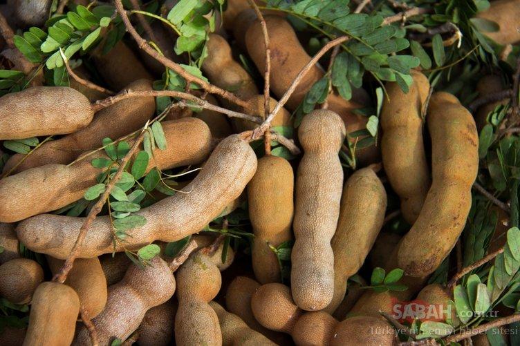 Bu besinler karaciğeri yeniliyor ve karaciğer yağlanmasını önlüyor! İşte karaciğer dostu süper besinler!