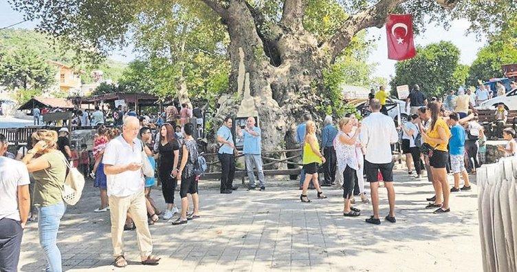 Musa Ağacı turizmi