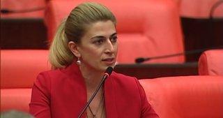 CHP'li Didem Engin Cumhurbaşkanlığı için aday oldu