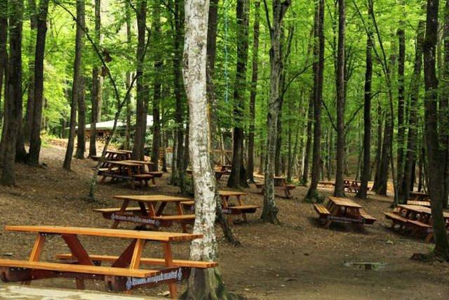 İstanbul'daki en güzel piknik alanları