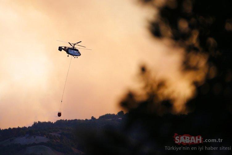 Adana Kozan'daki yangında 280 futbol sahası büyüklüğündeki orman ve tarla kül oldu