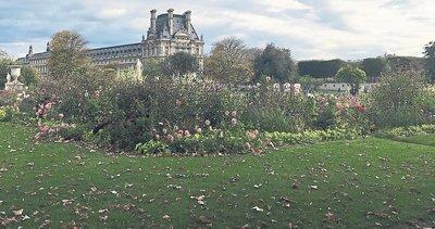 Paris'te bir sonbahar