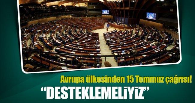 Avrupa Konseyi'ne şaşırtan Türkiye çağrısı!