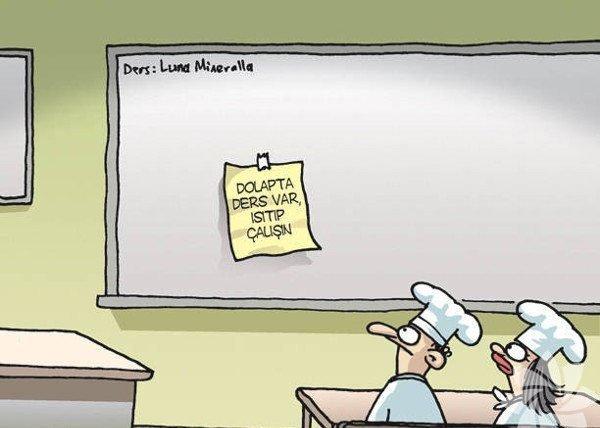 En komik okul karikatürleri