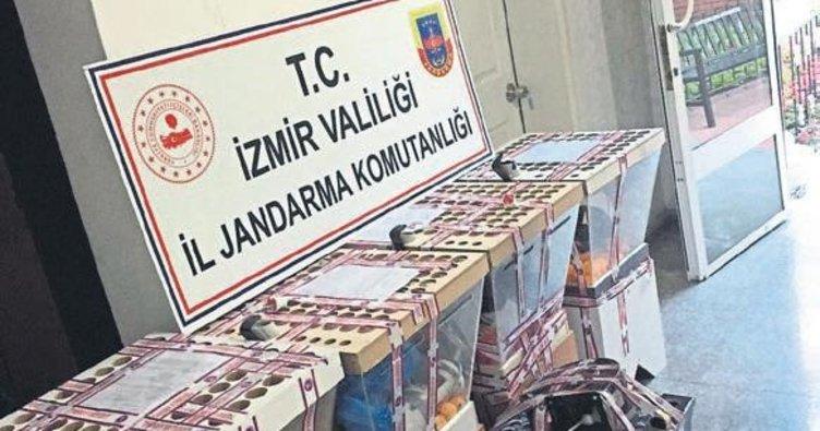 İzmir'de çay ocaklarına kumar baskını yapıldı