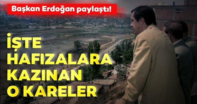 Başkan Erdoğan'ın '22 Mayıs Dünya Biyolojik Çeşitlilik Günü' mesajı bu görüntüleri akıllara getirdi