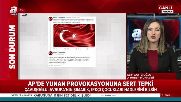 Türk Bayrağı'nı yırtan Yunan vekil Ioannis Lagos'a tepkiler çığ gibi büyüyor
