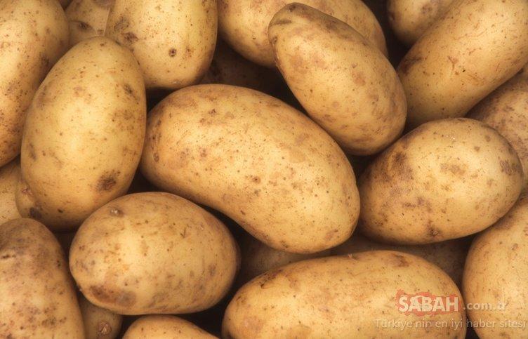 Wi-fi´ye patates takarsanız bakın ne oluyor!