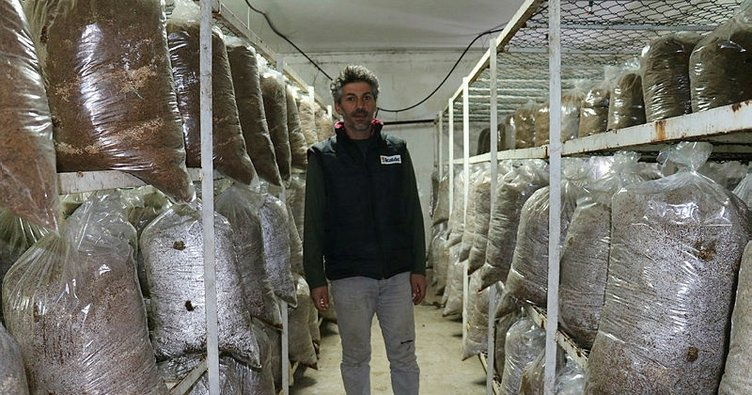 Kurduğu tesiste 2 ton mantar üretmeyi hedefliyor