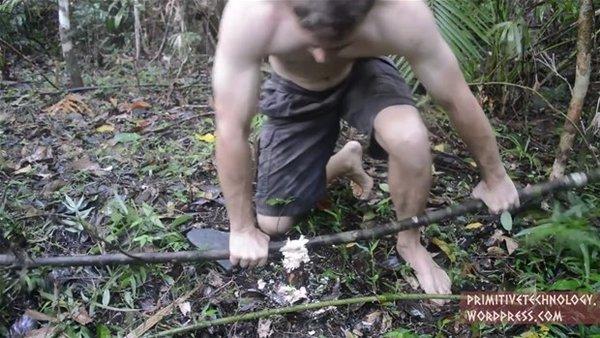 Ormanın kralı iş başında
