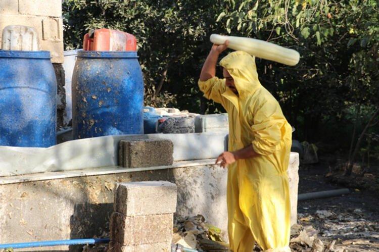 Üretimi zahmetli ama getirisi iyi! Hatay'da lif kabakları temizlik ürünlerine dönüştürülüyor