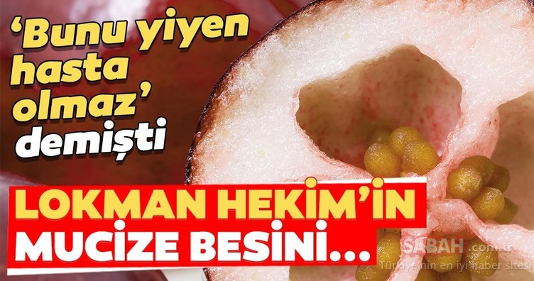 Lokman Hekim 'Bunu yiyen hasta olmaz' demişti!  İşte o besin...