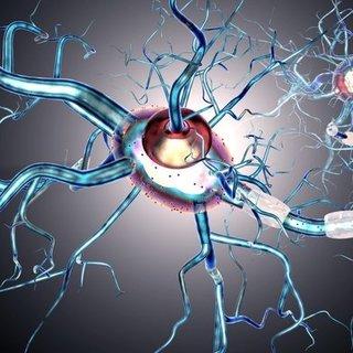 MS hastalığının tedavisi nasıl olur? MS hastalığı nedir?