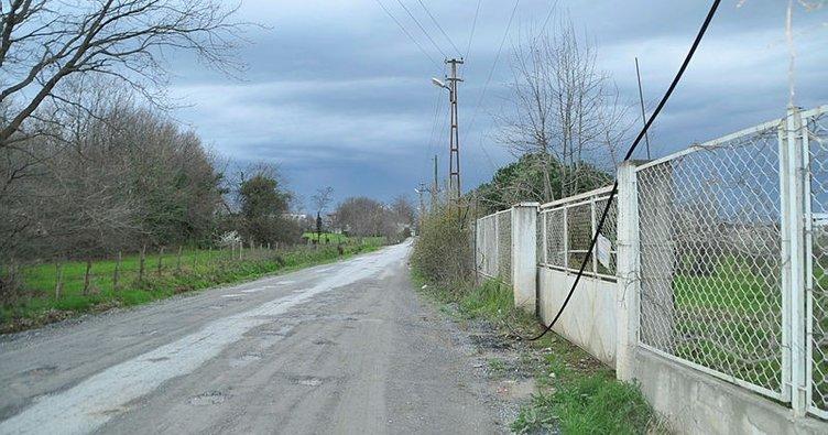 Samsun'da direkteki telefon kablolarını çaldılar