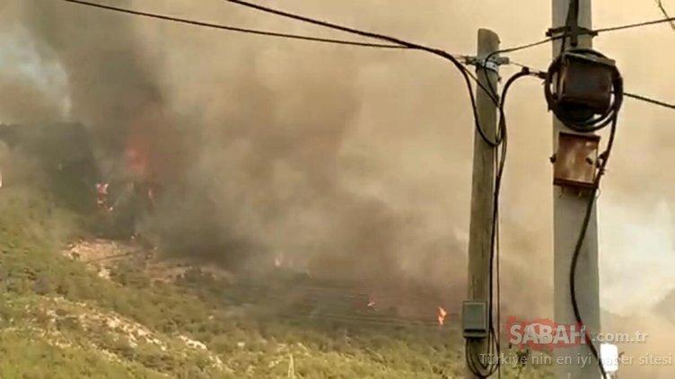 Son dakika   Hatay'daki yangınla ilgili dikkat çeken açıklama! Türkiye bu görüntüleri konuşmuştu...