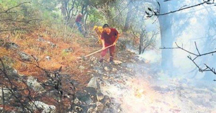 Şimşek orman yangını çıkardı