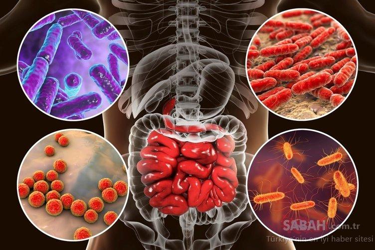 Bu diyetle mikrobiyotanızı düzenleyip 5 günde yağdan 2 kilo vereceksiniz