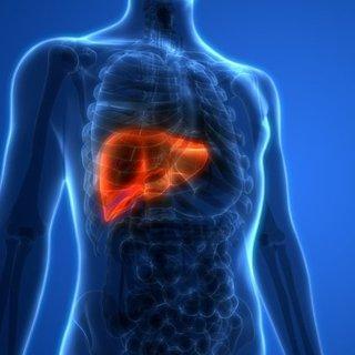 Karaciğer kanseri belirtileri nelerdir? Neden olur, tedavisi nasıl yapılır?