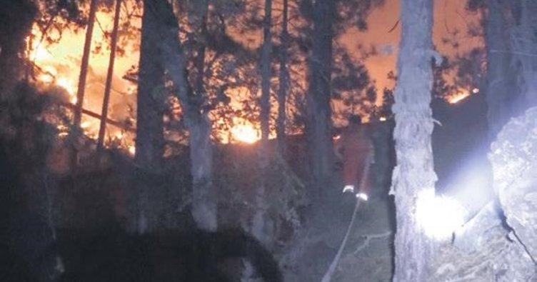 Piknikçi ateşi 30 hektarı yaktı