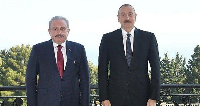 Aliyev, TBMM Başkanı Mustafa Şentop'u kabul etti