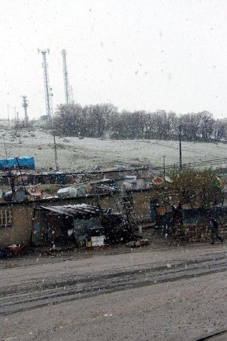 Cudi Dağı'nın bir tarafında kış, diğer tarafında bahar