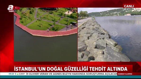 İstanbul'un doğal güzelliği Haliç tehdit altında! Rengi siyaha büründü | Video