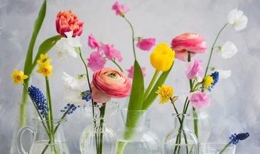 Rüyada çiçek Görmek Ne Anlama Gelir Haberleri Son Dakika Rüyada
