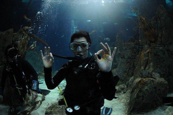 Deniz Akkaya köpekbalıklarıyla yüzdü