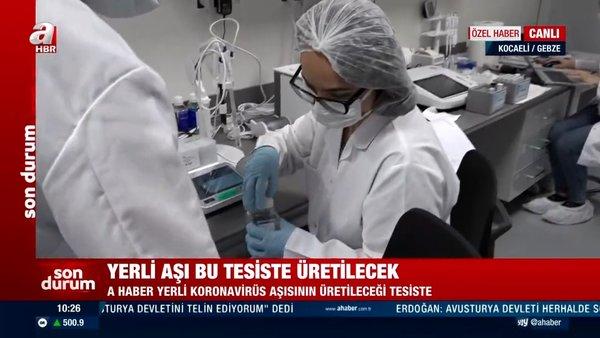 Yerli koronavirüs aşısı ne zaman çıkacak? Kocaeli'de yerli aşının üretileceği tesisler canlı yayında böyle görüntülendi