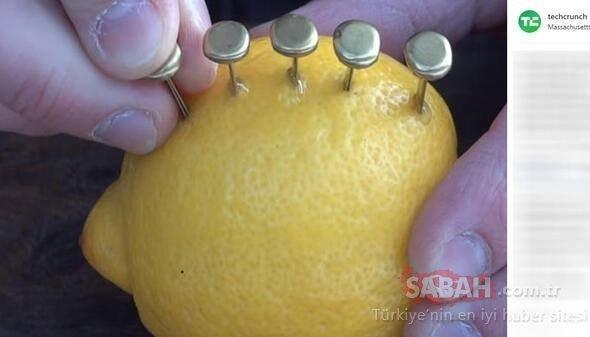 Rus mühendisin şaşkına çeviren çözümü! Limonla bakın ne yaptı...