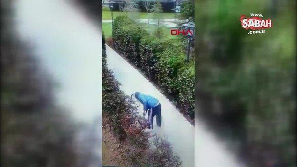 İstanbul'da kediyi yerden yere vuran sapık ruh hastası kamerada!