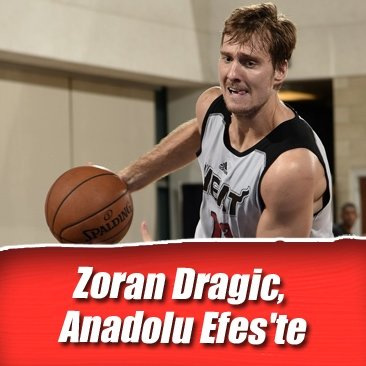 Zoran Dragic, Anadolu Efes'te