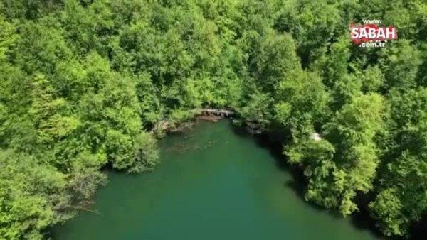 Yeşilin tüm tonlarını barındıran Yedigöller'de görsel şölen havadan görüntülendi | Video