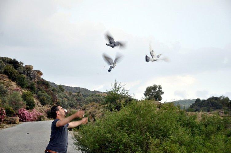 Eşiyle posta güvercini aracılığıyla haberleşiyor