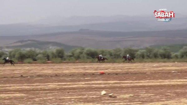 Suriye sınırında serbest stil at yarışları düzenlendi