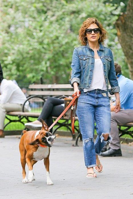Jennifer Lopez'in köpeklerine özel bakım!