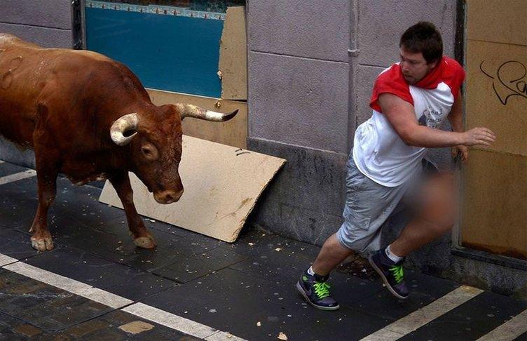 Boğalarla koşunun bilançosu: 41 yaralı