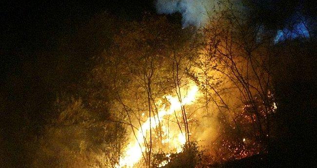 Son dakika haberler... Trabzon'da son 48 saatte 35 farklı noktada yangın!  Trabzon yangını son durum ne? - - En Son Haber