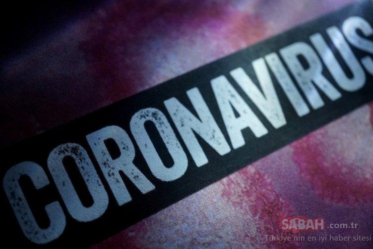 Corona virüsü son dakika haberleri: Koronavirüs aşısında umutlandıran gelişme! Ünlü bilim adamı tarih verdi…
