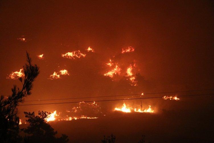 SON DAKİKA: İzmir'deki dev yangın için Bakan Pakdemirli'den çarpıcı sözler: Böyle düşünmek saflık olur...