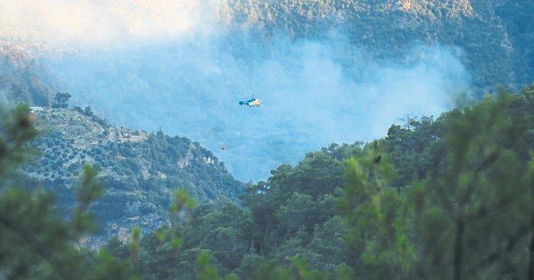 5 hektar kızılçam ormanı kül oldu