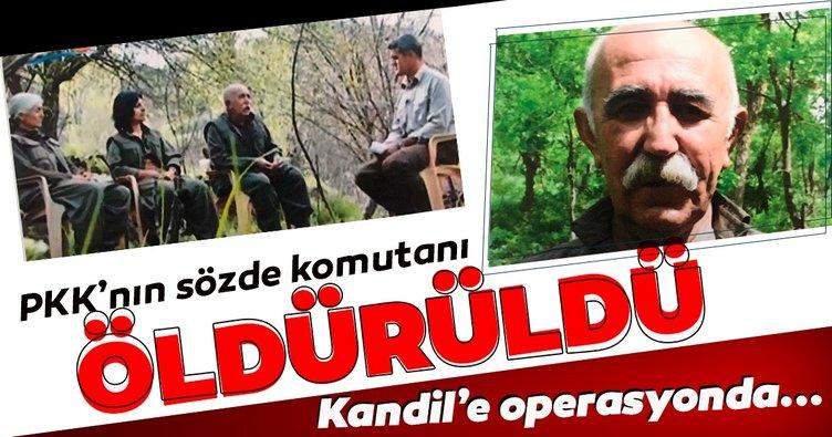Terör örgütü PKK'nın sözde komutanı Ali Haydar Kaytan öldürüldü