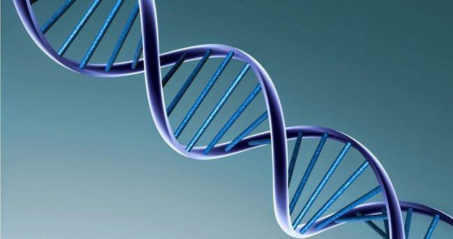 Genetik olan hastalıklar nelerdir?