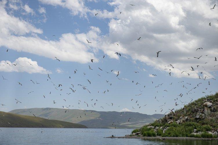 Doğu'nun Saklı Güzelliği: Balık Gölü