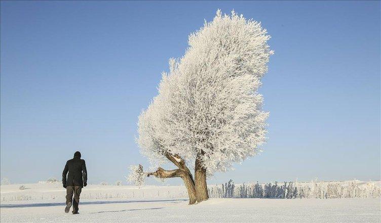 Kastamonu'da soğuk hava