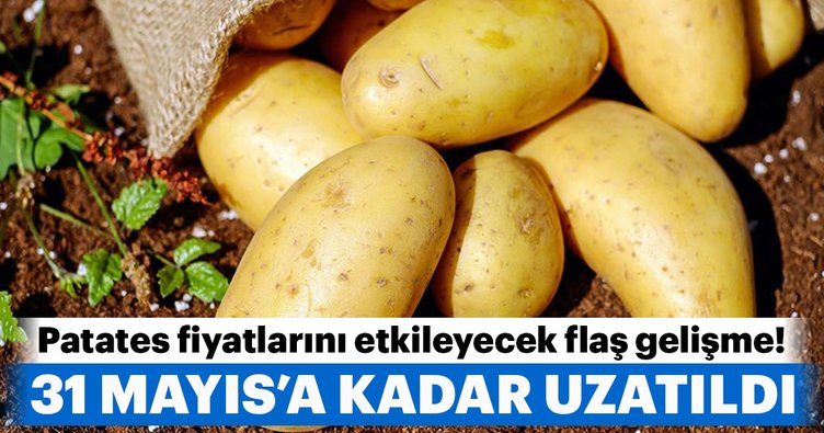 Sıfır gümrüklü patates ithalatı süresi 31 Mayıs'a uzatıldı!