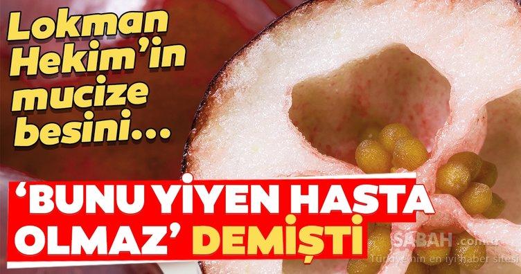 Lokman Hekim'in şifa kaynağı dediği besin ortaya çıktı!
